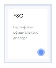 fsg-mini